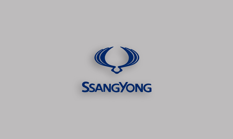 SsangYong, Actyon, Diesel, 2.2 e-XDI - 178HP ECONOMY MAP